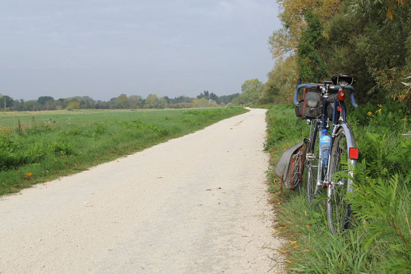 Vers Neuvy sur Loire