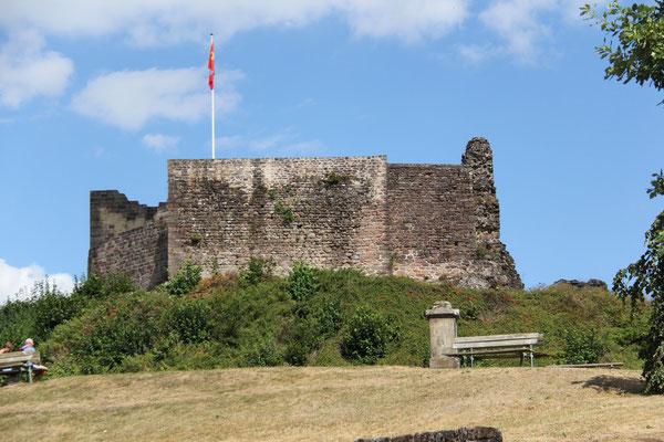 Ruines du chateau d'Epinal