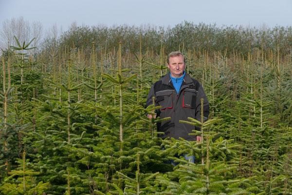 Blumen-Rose | Torsten Rose zwischen seinen Schützlingen in der Weihnachtsbaumplantage.