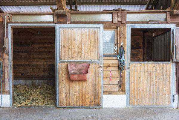 Aussenstall mit geöffneter Tür am Reiterhof in Steinhöring