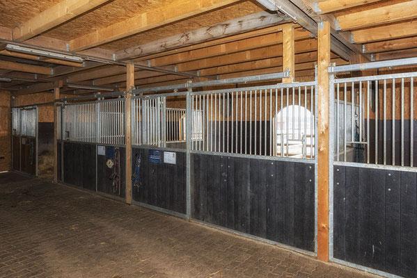 Stallgasse im Pferdehaus