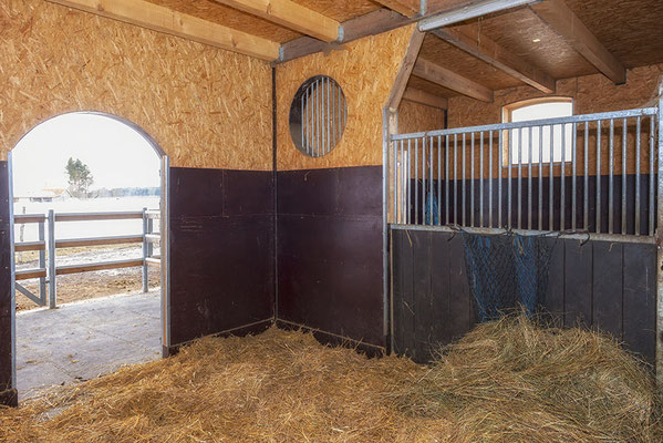 Paddockbox im Pferdehaus