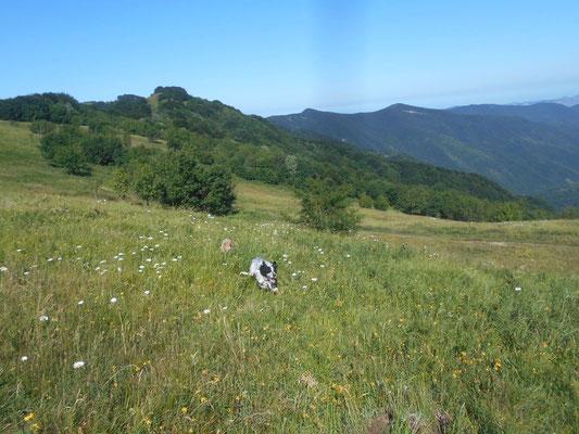mattinata di allenamenti sul monte Antola sponda genovese