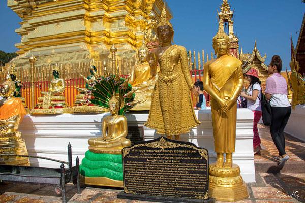 2019  02 - Chiang Mai , Wat Phra That Doi Suthep  -L10A6989