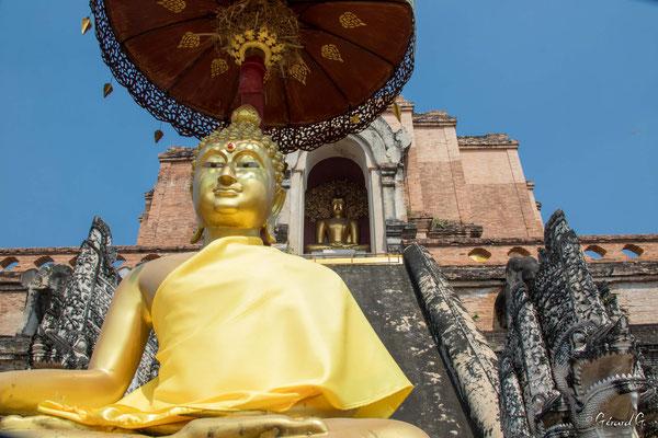 2019  02 - Chiang Mai , Wat Chadi Luang  -L10A7028