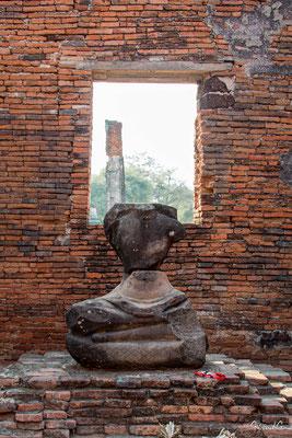 2019  02 - Ayutthaya , Wat Mahathat  -L10A5745