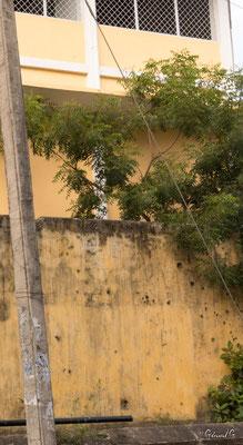 Jaffna, souvenir de la guerre