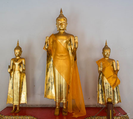 2019  02 - Bangkok , Wat Pho  -L10A5578