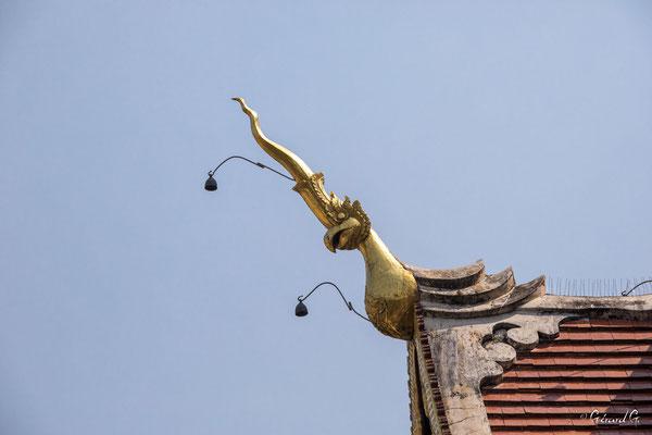 2019  02 - Chiang Mai , Wat Chadi Luang  -L10A7046