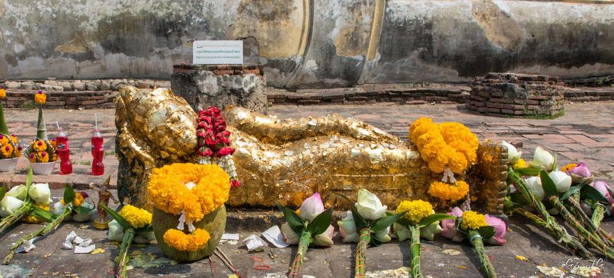 2019  02 - Ayutthaya , Wat Lokaya Sutha  -L10A5698