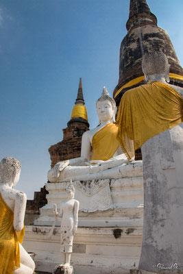 2019  02 - Ayutthaya , Wat Yai Chai Mongkhon  -L10A5633