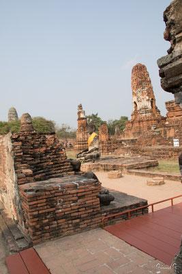 2019  02 - Ayutthaya , Wat Mahathat  -L10A5731