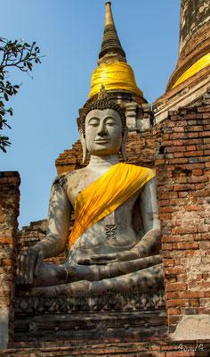 2019  02 - Ayutthaya , Wat Yai Chai Mongkhon  -L10A5625