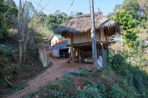 2019  02 - Chiang Rai, Doi Pui village Hmongs   -L10A6800