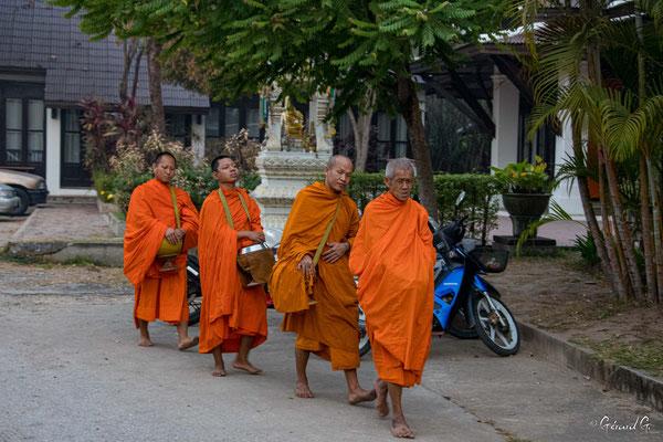 2019 02 - Offrande au  moines - L10A6126