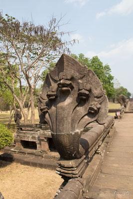 2019  02 - Prakhon Chai, Prasat Phnom Rung   -L10A7522
