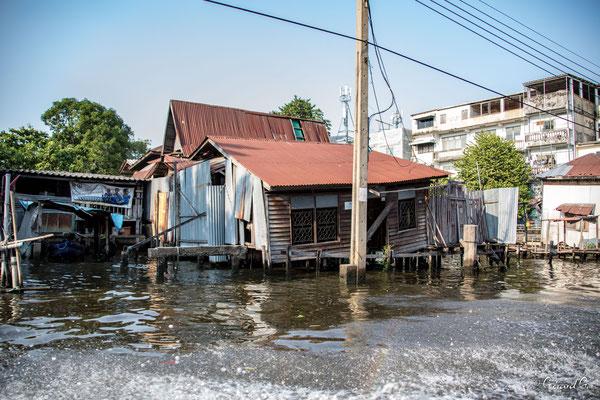 2019  02 - Bangkok , les Klongs  -L10A5191
