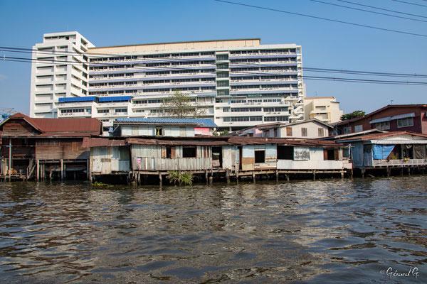 2019  02 - Bangkok , les Klongs  -L10A5187