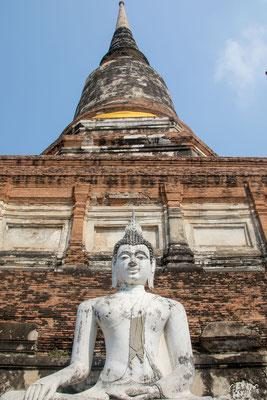 2019  02 - Ayutthaya , Wat Yai Chai Mongkhon  -L10A5631