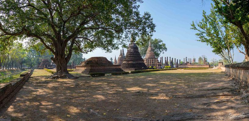 2019  02 - Sukhotai , Wat Mahathat  -L10A6045-Panorama