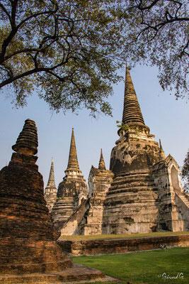 2019  02 - Ayutthaya , Wat Mahathat  -L10A5751