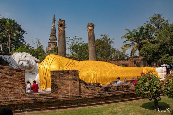 2019  02 - Ayutthaya , Wat Yai Chai Mongkhon  -L10A5647