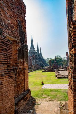 2019  02 - Ayutthaya , Wat Mahathat  -L10A5744