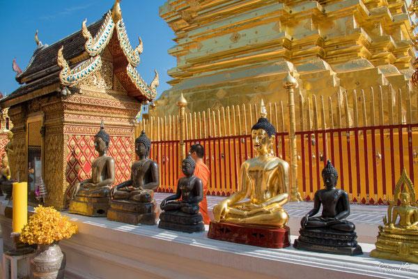 2019  02 - Chiang Mai , Wat Phra That Doi Suthep  -L10A6946