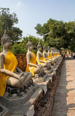 2019  02 - Ayutthaya , Wat Yai Chai Mongkhon  -L10A5629