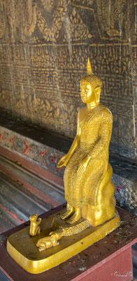 2019  02 -  Ubon Ratchathani, Wat Thung Si Muang  -L10A7114