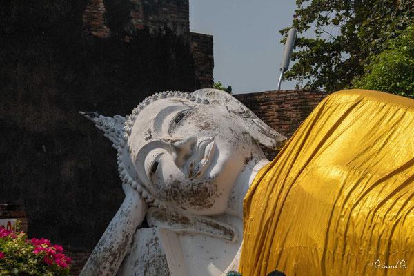 2019  02 - Ayutthaya , Wat Yai Chai Mongkhon  -L10A5648