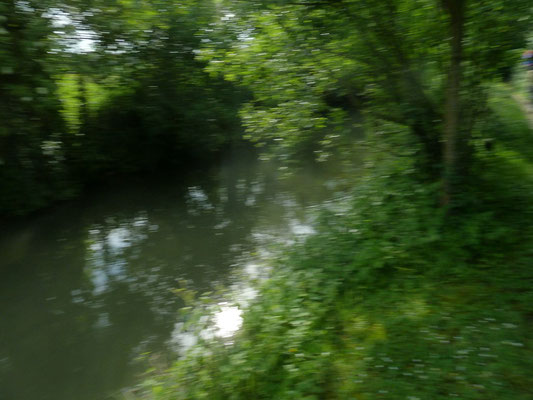 Et oui la nature coule au fil de l''eau