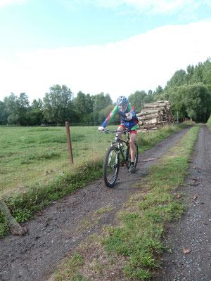 FRANCKY sort du bois