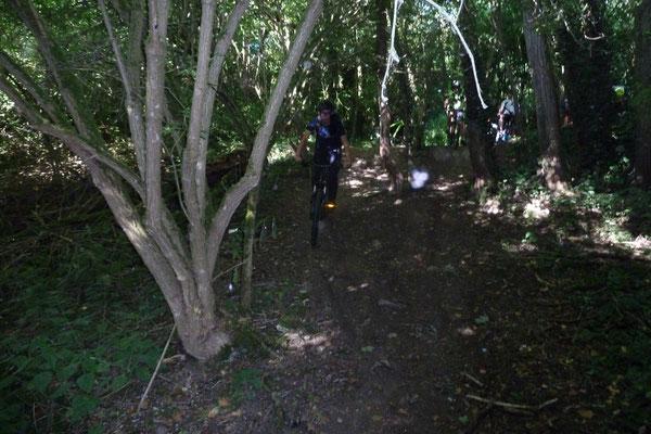 La sortie du bois