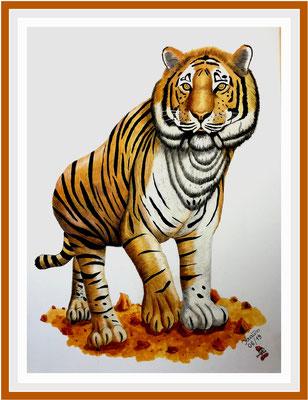 Tiger 112 x 82 cm Acryl/ Farbstifte auf Karton 750 €