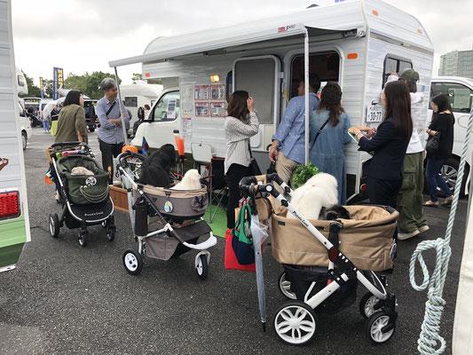 Odaiba Campingcar Fair 2019 - Hunde unterwegs auf der Messe