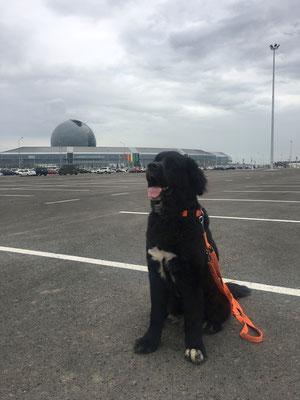 Ganz schön großer Parkplatz für Expobesucher