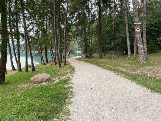 Spazierweg rings um den Lago di Coredo