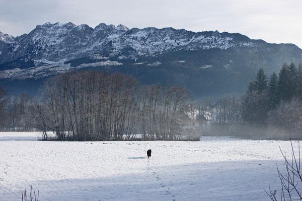 Winterparadies für unseren Vierfüssler