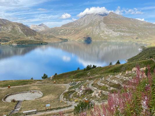 Alpengarten am Lac du Mont Cenis