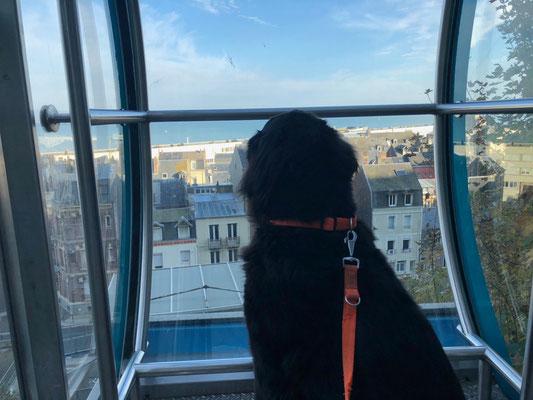 Vanja genießt die Fahrt in der Funiculaire von Le Tréport