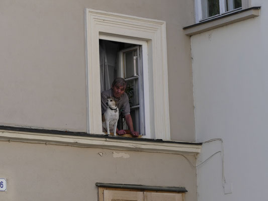 Fenstergucker unterwegs ;-)