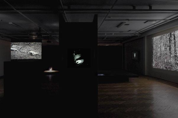 exhibition OO - Marta Zasępa,bwa Osltyn; 3-EFF10