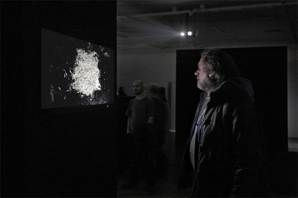 exhibition OO - Marta Zasępa,bwa Osltyn; 3-EFF8