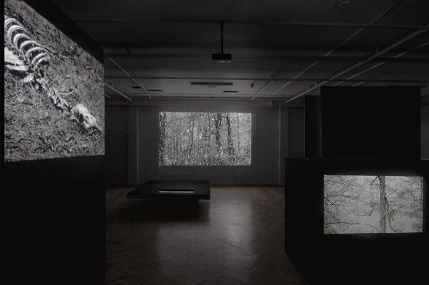 exhibition OO - Marta Zasępa,bwa Osltyn; 3-EFF9