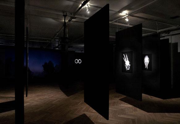 exhibition OO - Marta Zasępa,bwa Osltyn; 3-EFF3