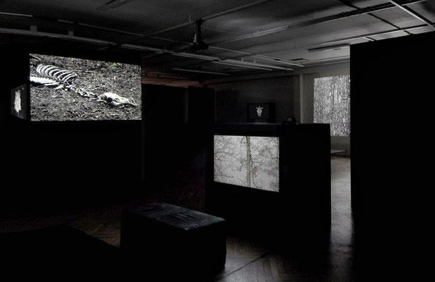 exhibition OO - Marta Zasępa,bwa Osltyn; 3-EFF6