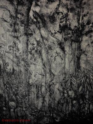 Entwicklung 1, Strichätzung, Kaltnadel, 40 x 50 cm (Plattenformat), 2012