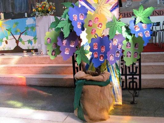 Rechts neben dem Altar ist ein Rebstock mit den Fotos der 31 Kinder.