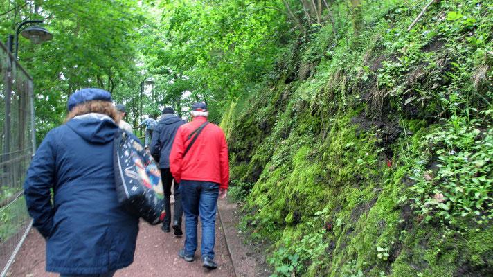 Mittwoch: Aufgang zur Wartburg in Eisenach